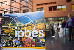 Their goal is to integrate 'Shared Socio-Economic Pathways' in IPBES scenarios. Photo: Stefan Bernhardt, iDiv