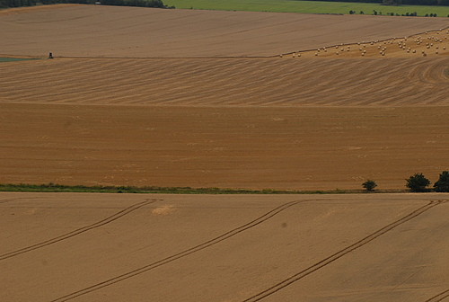 Farmland in Germany (Photo: Guy Pe'er)