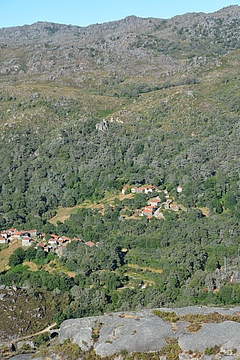 The study area, the Portuguese Peneda Gerês National Park, consists of fragments of different habitat types like forest, scrubland and meadows (picture: Henrique Pereira).