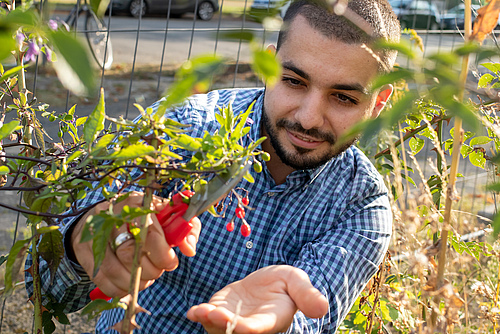 MIE celebrates Plant Health, featuring Adam Anaia