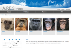 The website of the data base is hosted at the MPI EVA (image: IUCN SSC A.P.E.S.).
